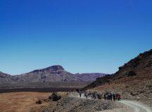 Hiking in Tenerife – 5 years Tenerife Walking Festival